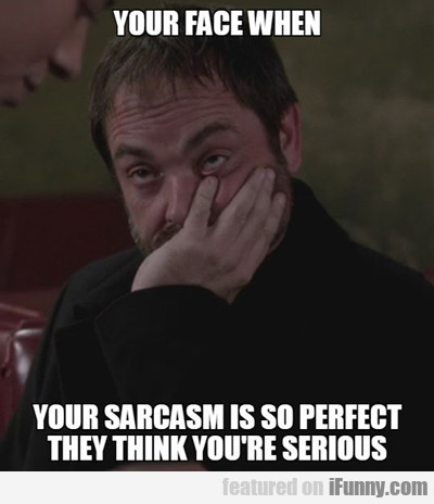 Your Face When Your Sarcasm Is...
