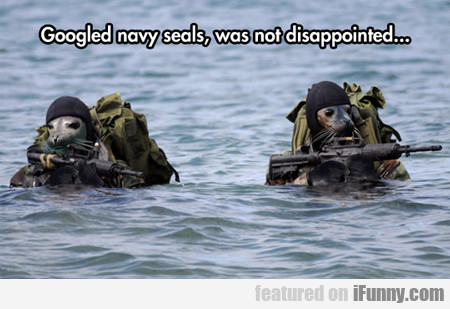 Googled Navy Seals And Wasn't Disappointed...