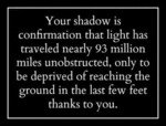 Your Shadow Is Confirmation That Light...