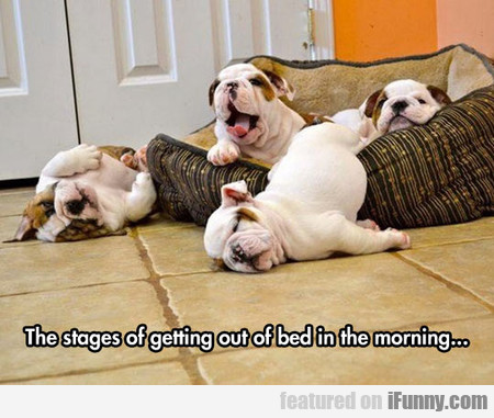 the stages of getting out of bed in the morning