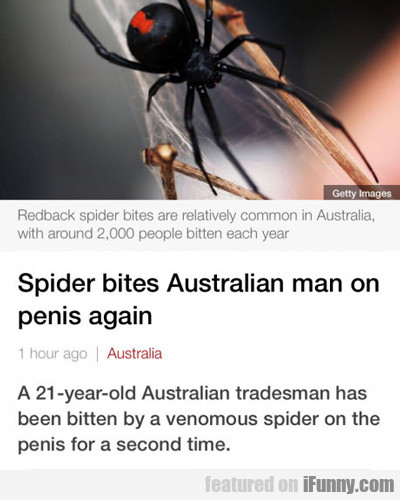 Man Bit On Penis By Spider, Again...