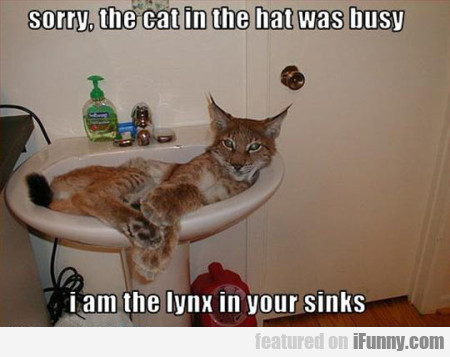 Sorry The Cat Was In The Hat Was Busy...