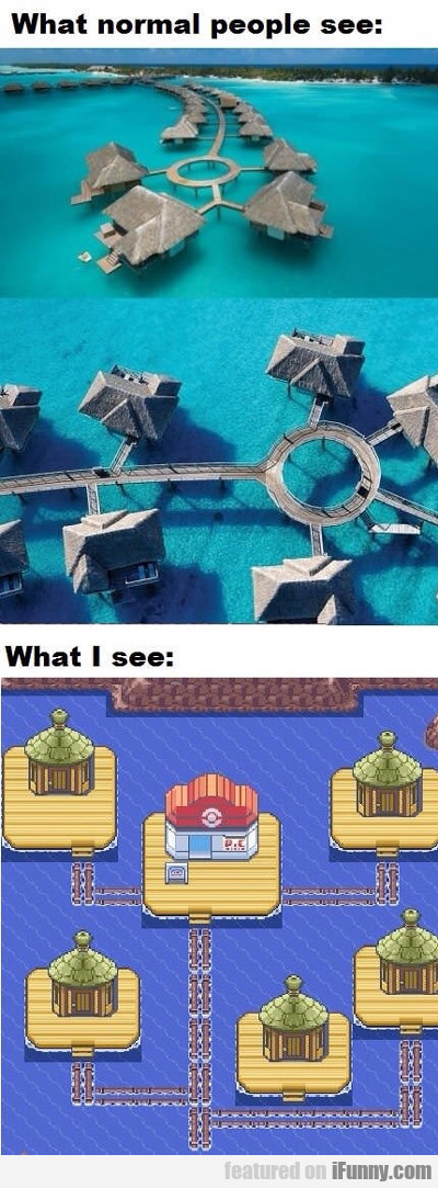 What Normal People See And What I See...