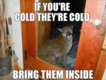 If You Are Cold They Are Cold...