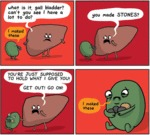 What Is It, Gall Bladder?