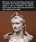 If You Ever Feel Stupid Remember That Caligula...