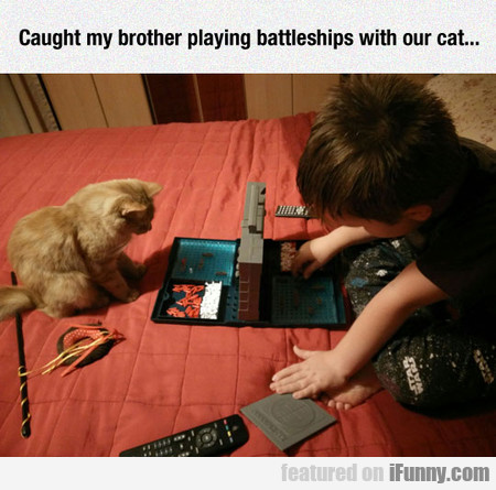 Caught My Brother Playing Battleships With Our Cat