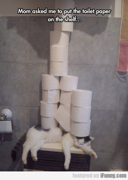 mom asked to put the toilet paper on the shelf