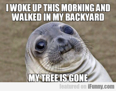 I Woke Up This Morning And Walked...