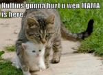 Nuffins Gunna Hurt U Wen Mama Is Here