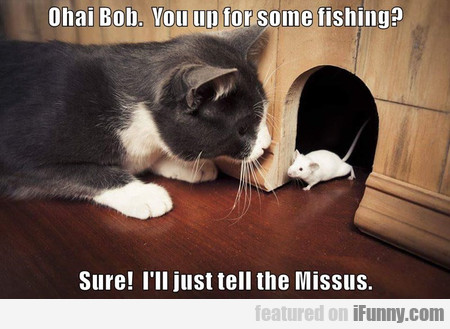 Ohai Bob. You Up For Some Fishing?