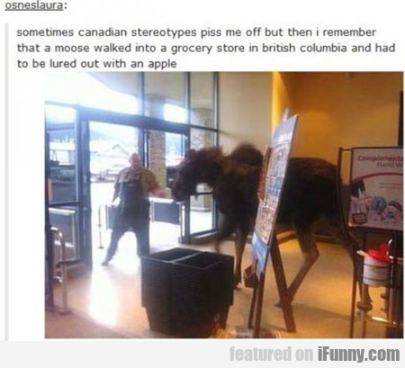Sometimes Canadian Stereotypes Piss Me Off
