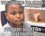 Was Looking For Shoes...
