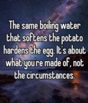 The Same Boiling Water