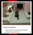 This Doesn't Concern You Robert