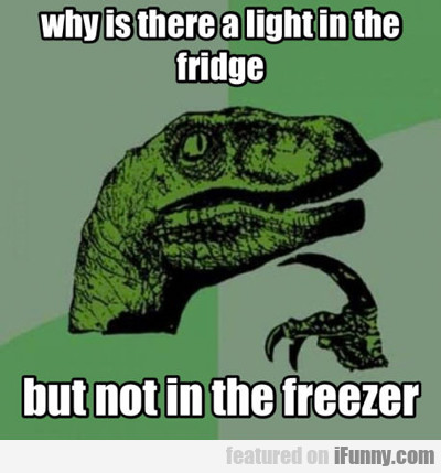 Why Is There A Light In The Fridge...