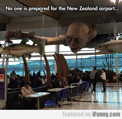 New Zealand Airport...
