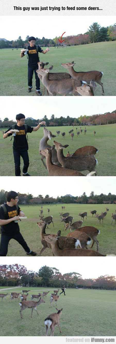 This Guy Was Just Trying To Feed Some Deers...