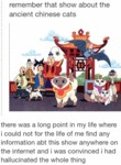 Remember That Show About The Ancient Chinese Cats