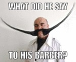 What Did He Say Tot He Barber?