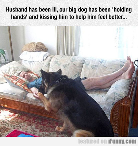 Husband has been ill, our big dog has been...