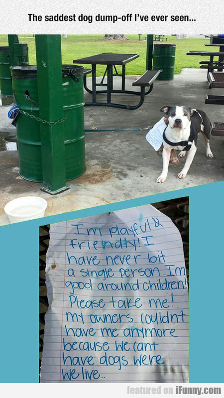 The Saddest Dog Dump-off I've Ever Seen...