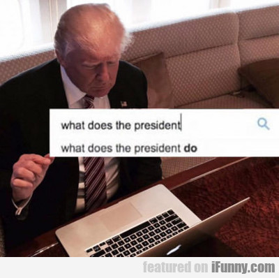 What Does The President Do?