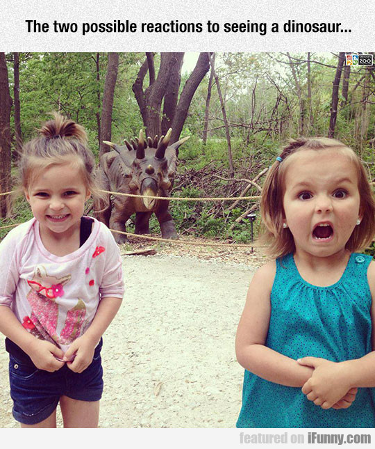 Possible Reactions To Seeing A Dinosaur...