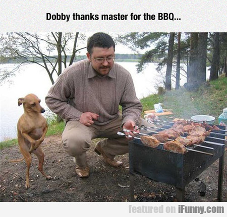 Dobby Thanks Master For The Bbq...