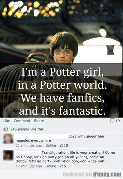 I'm A Potter Girl In A Potterworld...