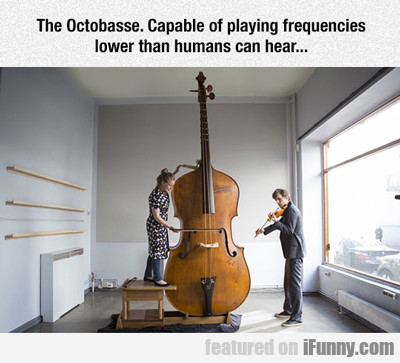the octobasse is capable of playing...