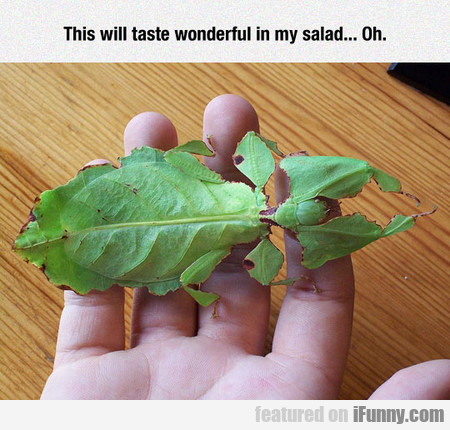 This will taste wonderful in my salad... Oh