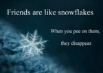 Friends Are Like Snowflakes, When You Pee....