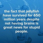 Great News For Stupid People