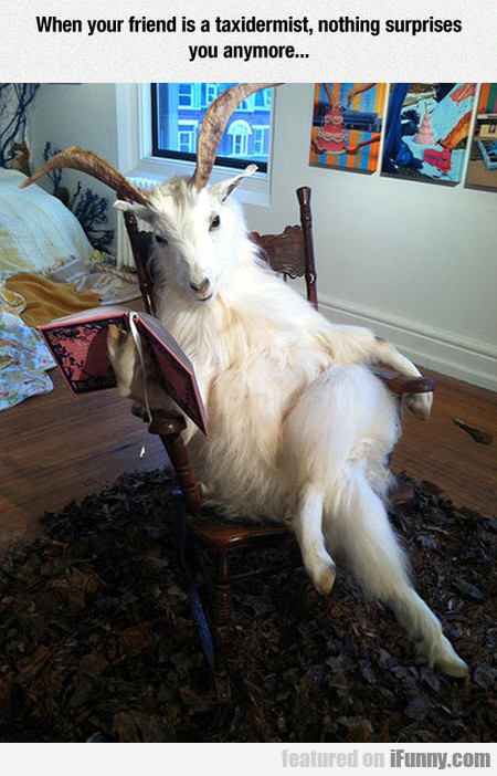 When Your Friend Is A Taxidermist, Nothing...