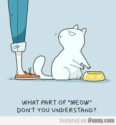 What Part Of Meow...