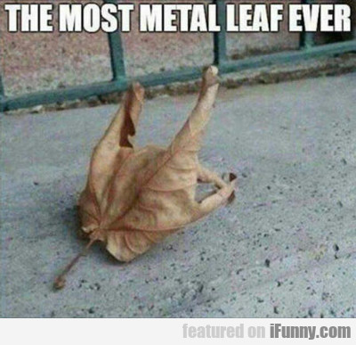 The Most Metal Leaf Ever...