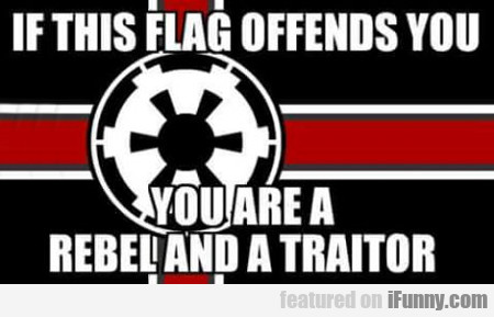 If This Flag Offends You...