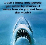 I Don't Know How People Get Eaten By Sharks...