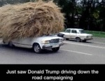 Just Saw Donald Trump Driving Down The Road