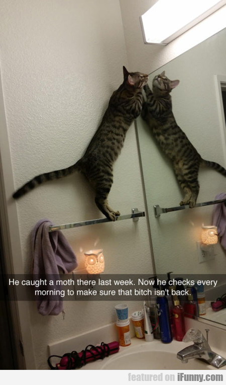 He caught a moth there last week