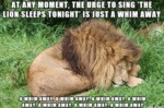 At Any Moment, The Urge To Sing The Lion Sleeps...