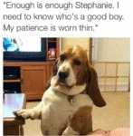 Enough Is Enough, Stephanie. I Need To Know...