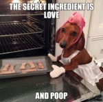 The Secret Ingredient Is Love And...