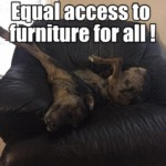Equal Access To Furniture For All
