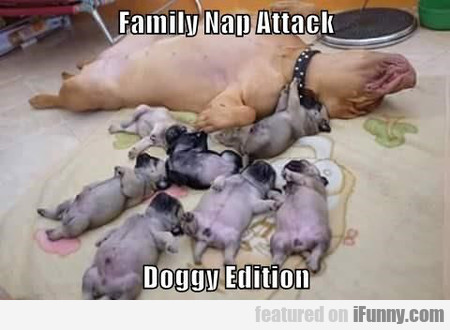 Family Nap Attack Doggy Edition