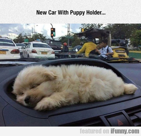 New Car With Puppy Holder...