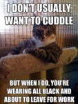 I Don't Usually Want To Cuddle, But When I Do...