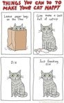 Things You Can Do To Make Your Cat Happy