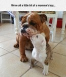 We're All A Little Bit Of A Momma's Boy...